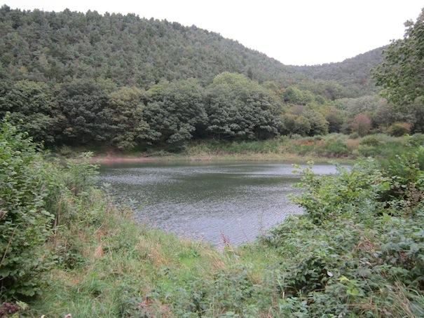 Jean.Main reservoir, Snailbeach